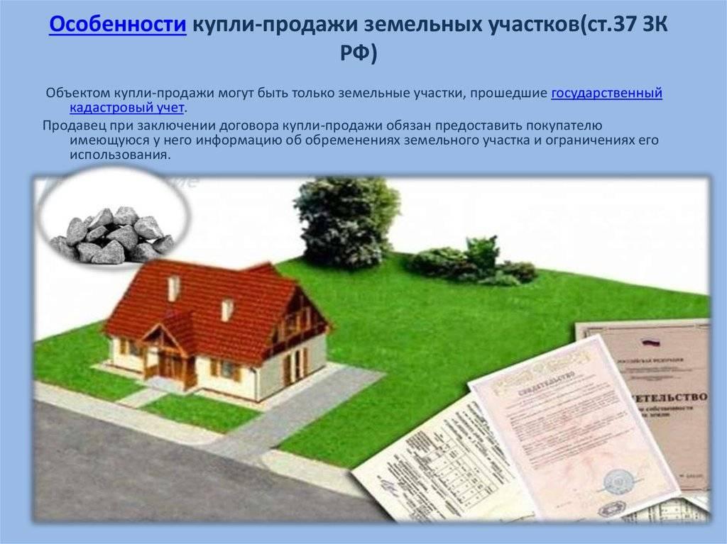 Дачный участок в собственность — оформление права собственности на участок