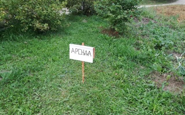 Сроки, особенности и стоимость аренды земли у муниципалитета