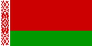 Порядок выплаты алиментов в Беларуси