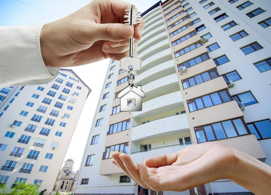 Как принять квартиру в новостройке – порядок действий