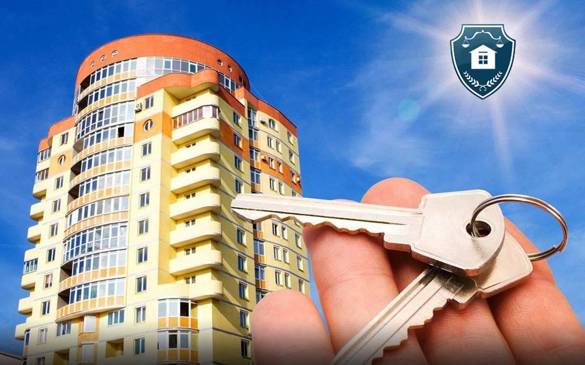 Покупка квартиры в новостройке: пошаговая инструкция 2020