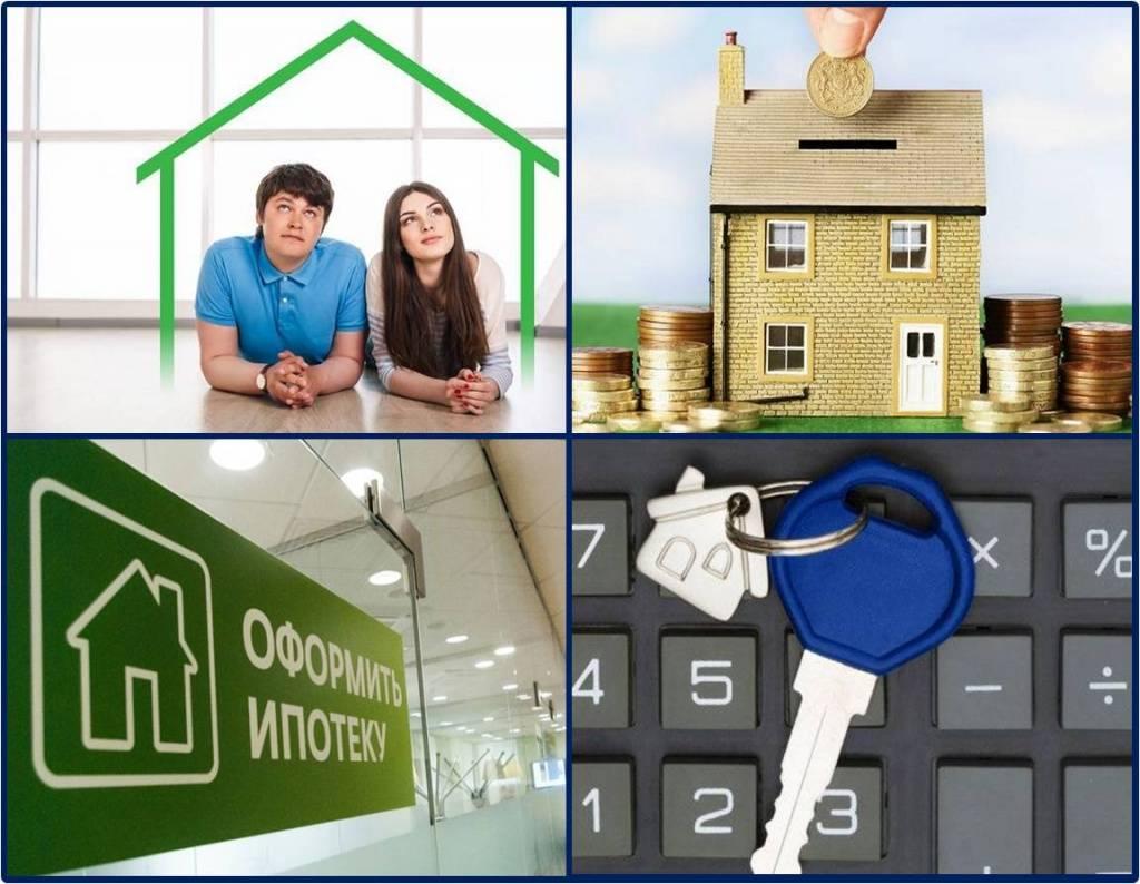Порядок покупки квартиры в ипотеку в новостройке: основные нюансы процедуры купли-продажи
