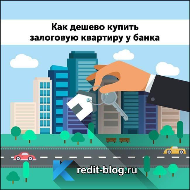 Покупка квартиры по дду: пошаговая инструкция и порядок оформления